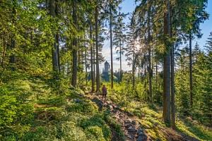 Šumava u Kašperských hor v Hotelu Rohanov s multifunkčním hřištěm, vyžitím pro děti a polopenzí...
