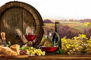 """Penzion """"V Zahraničí"""" na Jižní Moravě s neomezenou konzumací vína, hudbou a polopenzí..."""