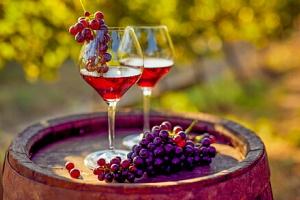 Jižní Morava: Penzion V Zahraničí s neomezenou konzumací vína, večerem s hudbou a polopenzí + 2…...