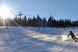 Lyžovačka ve Ski Aréně Karlov - celodenní skipas pro 1 osobu...