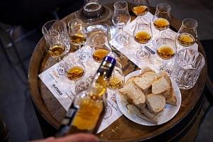 Degustace karibských rumů...