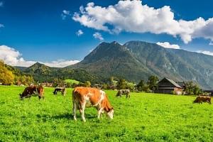 Rakouské Alpy u termálních lázní i jezera: Pobyt v Bad & Ski Pensionu *** s neomezeným wellness a…...