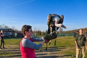 Jedinečný zážitek: Návštěva záchranné stanice dravců a sov včetně ukázky letu ptactva a základů…...